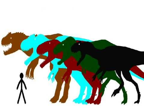 (INACCURATE) therapod dinosaur size comparison