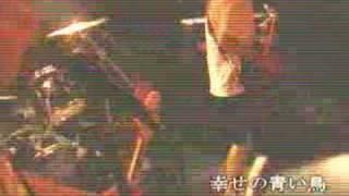 Free Punk Party!!vol.2での幸せの青い鳥のライブ! チェキッ!!