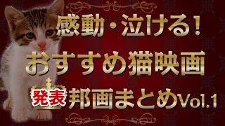 感動・泣ける!おすすめ猫映画まとめVol.1(邦画・日本) ねこタクシー グ...