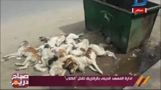 صباح دريم| كارثة ادارة المعهد الدينى بالزقازيق تسمم