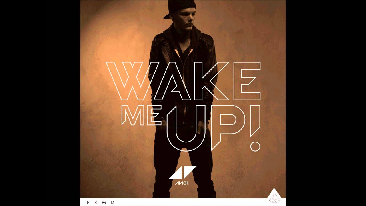 Image result for aloe blacc wake me up