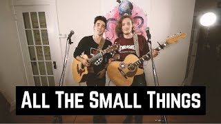 All The Small Things - Blink 182 (Acoustic Cover)