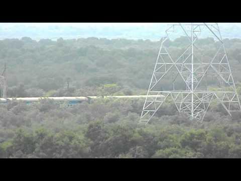 Mumbai Mangroves and the Gujrat Express !