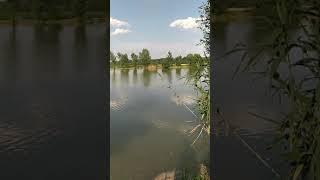 Рыбалка ст Суворовская Лесные озера Ставропольский край
