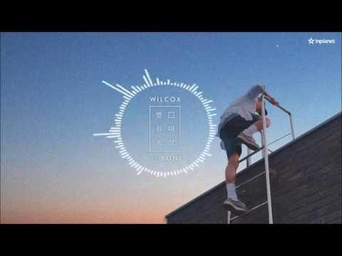 윌콕스 Wilcox - 별 침대 옥상 Bed on the Rooftop (With Boni)
