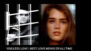 ENDLESS LOVE (Brooke Shields) 2014 rare movie soundtrack.