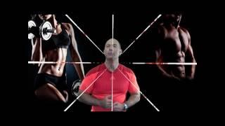 Как устроена мышечная система человека