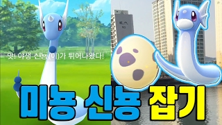 포켓몬고 부산 개꿀장소 나루공원 미뇽 신뇽 희귀 포켓몬 잡기!! (센텀시티) 포켓몬GO [Pokemon GO] - 기리