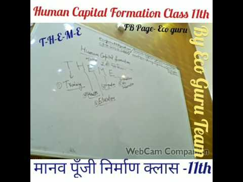 ECONOMICS 11th Class - HUMAN CAPITAL FORMATION