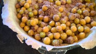 Fresh Ground Cherry Pie Recipe