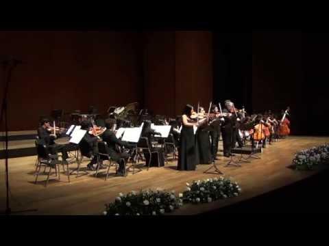Vivaldi, Concerto for 4 violins in B minor