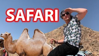 !!! (Safari VLOG)