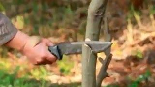 Трейлер серии фильмов о японских ножах от компании KASUMI