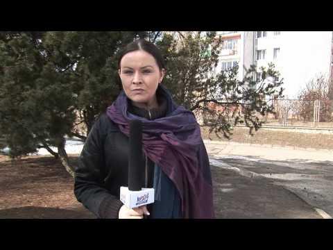 Kabaret LIMO - Leksykon Polskiego Dziennikarstwa - Halinki