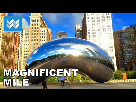 Walking around The Magnificent Mile (Michigan Avenue) in Chicago, Illinois