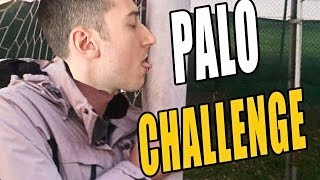 PALO CHALLENGE! - Fifa Ultimate Team