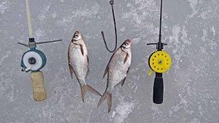 Зимняя рыбалка для начинающих Что нужно для зимней рыбалки
