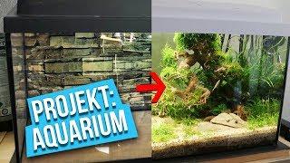 Der letzte Fisch - Projekt: Aquarium