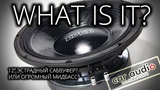 EDGE EDPRO-12PW-E8 - Эстрадный сабвуфер или мидбас?