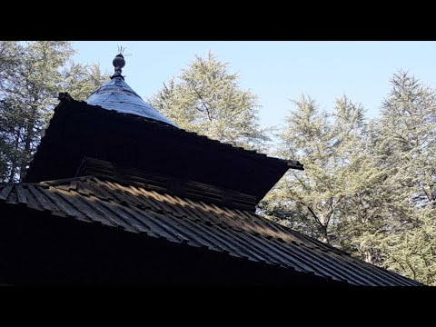 Hadimba Devi Temple Live Manali