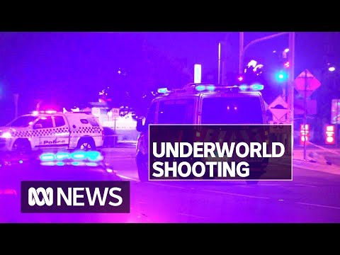 Melbourne Crime Figure Nabil Maghnie Shot Dead In Epping | ABC News