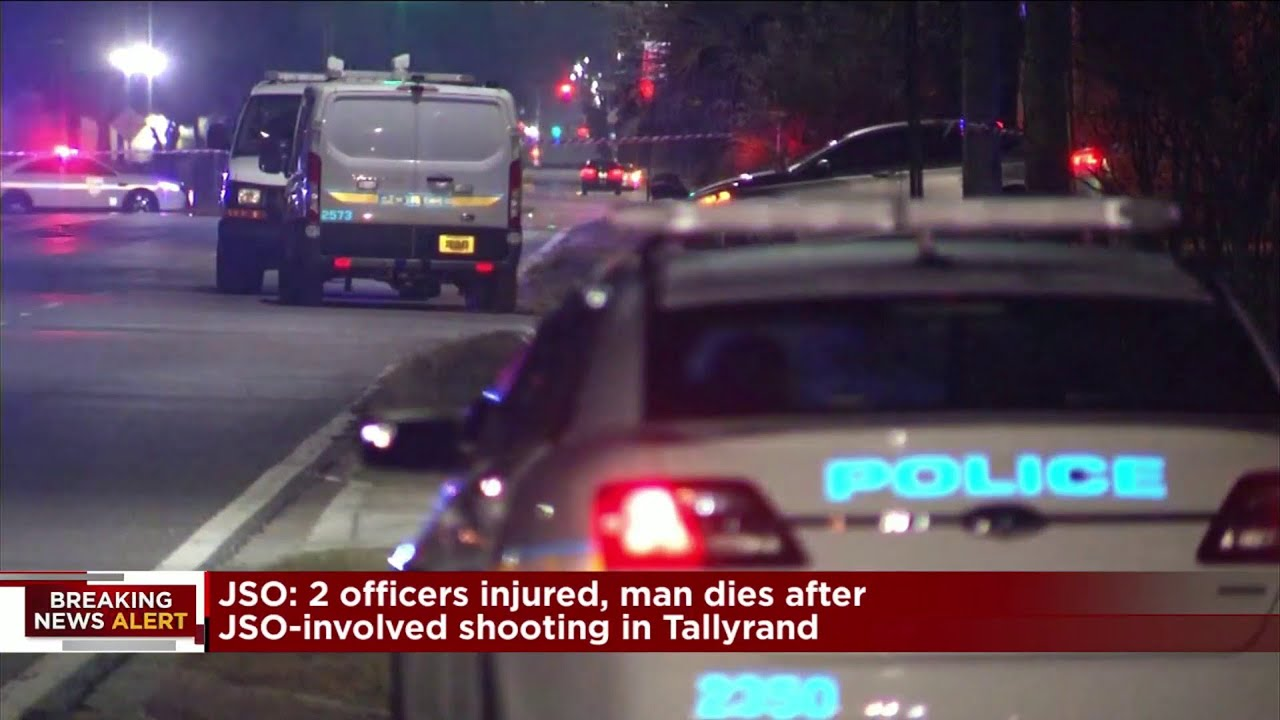 Driver dies after trying to flee traffic stop