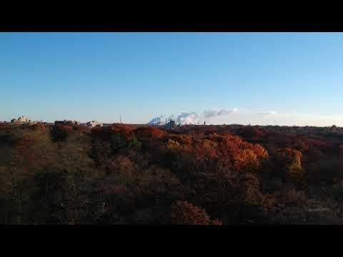 Drone flight over Lincoln Park in Decatur, IL