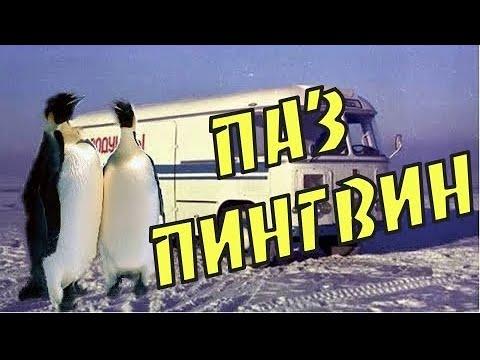 """ПАЗ """"Пингвин"""" за что его так называли. История создания ПАЗ-3742"""