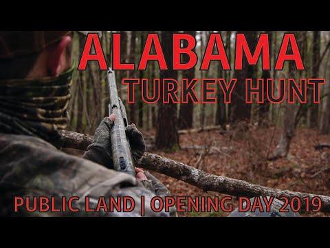 OPENING DAY TURKEY HUNT - ALABAMA PUBLIC LAND 2019