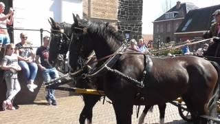 20160506 Ommen paarden