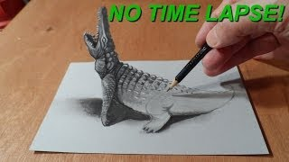 No Time Lapse, Trick Art, Drawing 3D Crocodile