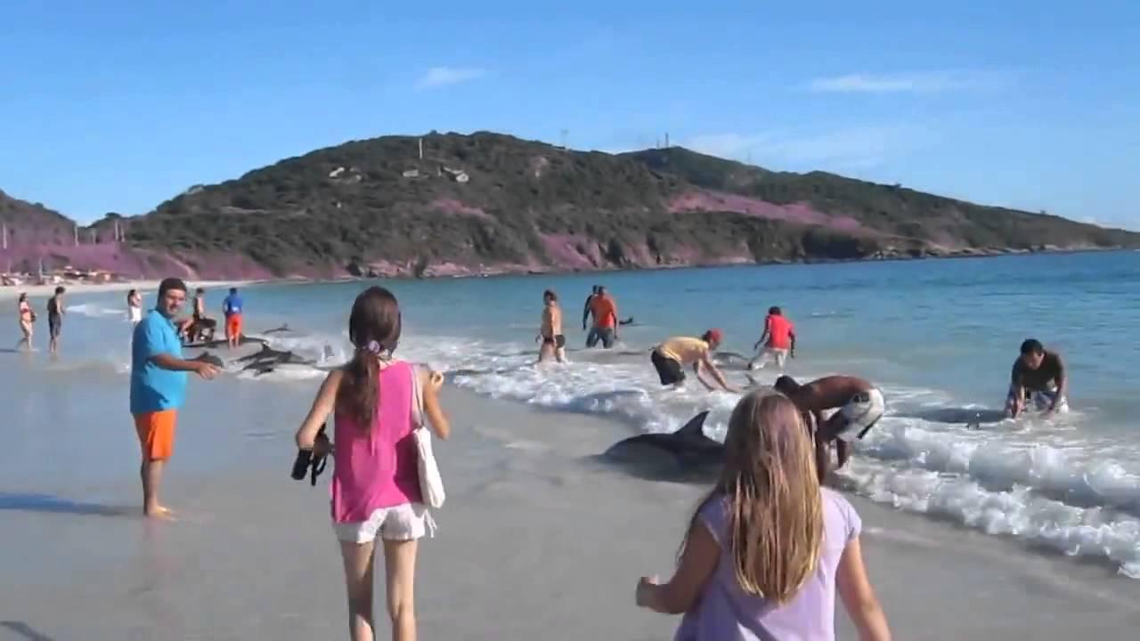 Он просто снимал море и пляж, как вдруг много акул выкинуло на пляж. эщкереееее