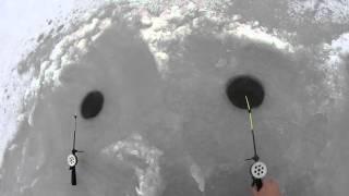 Трудовая зимняя рыбалка 2016  (Дневник рыболова).