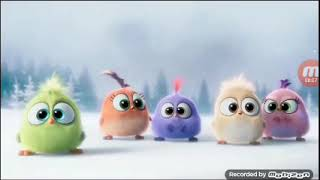 Angry Birds - Asks Papo Papo Danielwowm Rovo Games