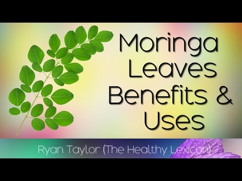 Moringa Leaves: Benefits and Uses (Drumstick Leaves)