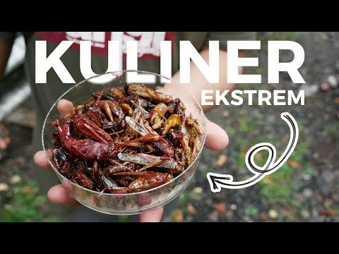 bahaya-untuk-pengidap-alergi-protein-tinggi!-kuliner-ekstrem-belalang-goreng-khas-gunungkidul