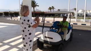 Египет из Кишинева Отель Coral Beach Resort Montazah Твердая бюджетная четверка