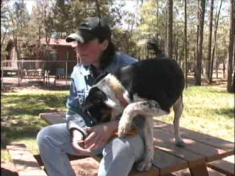 2009 duction to Stepping Outdoors television program