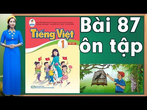 Tiếng việt lớp 1 sách cánh diều - Bài 87 Bảng chữ cái tiếng việt  learn vietnamese