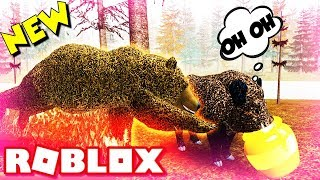 Roblox ''I Stole The Grizzly Bears Honey Pot!'' Wild Forest Is Back ! (Wild Boar Wild Animals)