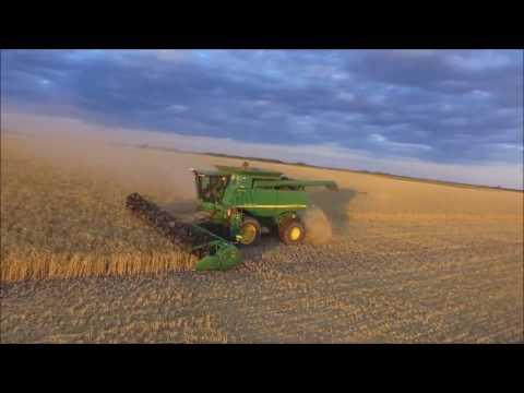 Cosecha de trigo/Wheat harvest - 2016 Argentina