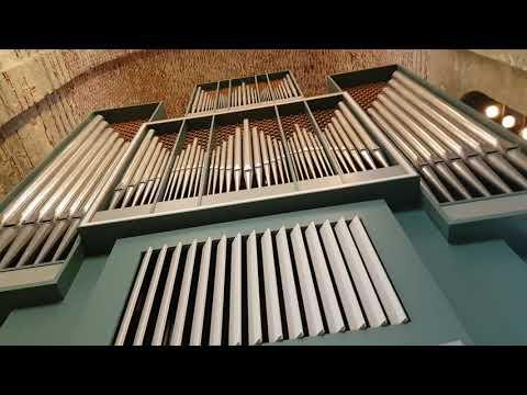 Adagio - государственный камерный оркестр республики Абхазия, Концерт в Пуцундском храме