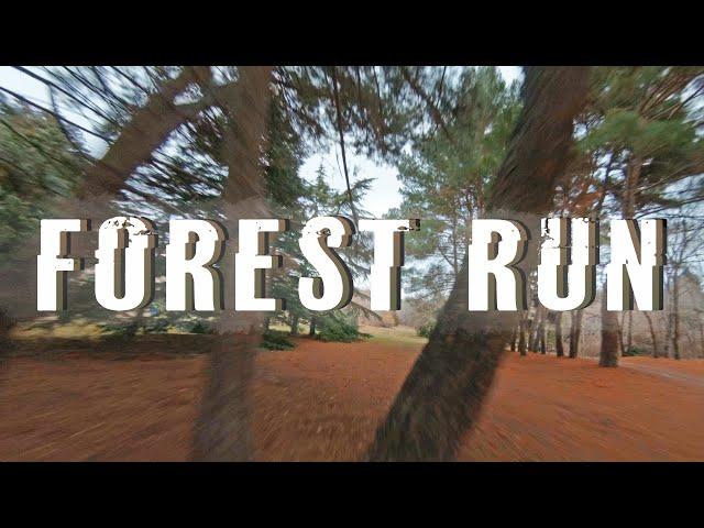 Forest Run - Cinematic FPV [4K]
