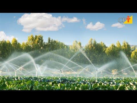 Clique e veja o vídeo Condições Climáticas Locais - Curso Projeto de Irrigação por Aspersão