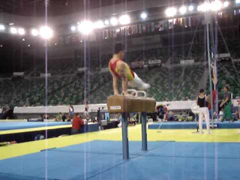 Zhang Hongtao PH 2005 Melbourne Worlds Practice