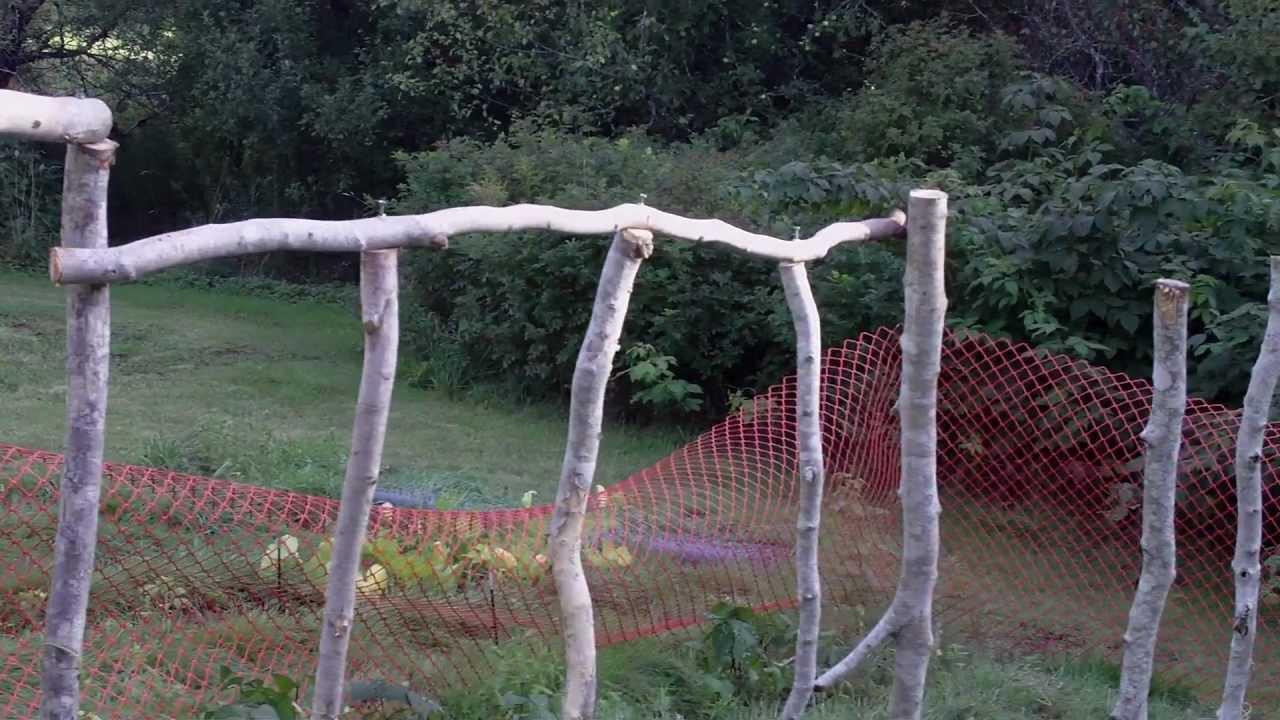 Building A Climbing Bean Pole Fence Trellis Green Beans