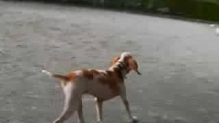 KISHIDA DAYS動画 http://www.kishidadays.com.
