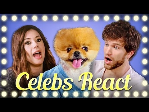Thumbnail: CELEBS REACT TO HOWTOBASIC