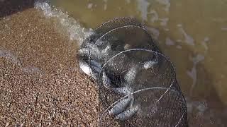 Азовское море На это стоит посмотреть The Sea of Azov It s worth a look
