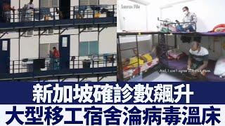 新加坡確診數飆升 大型移工宿舍淪病毒溫床 新唐人亞太電視 20200423